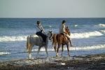 רכיבה על סוסים בשרון